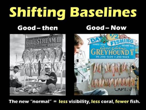 shifting_baselines