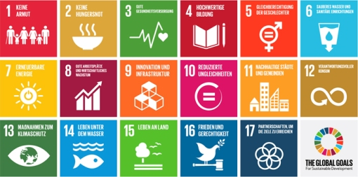 de_global_goals_uebersicht_700